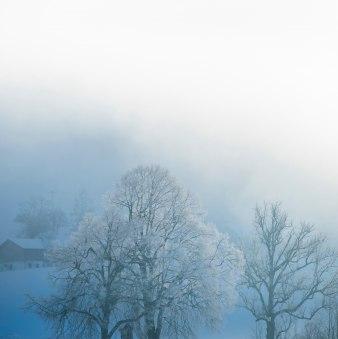 Lippmühlenrunde, © Thorsten Schär