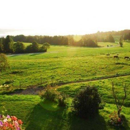 Früh aufstehen lohnt sich!, © im-web.de/ Touristinformation Fischbachau