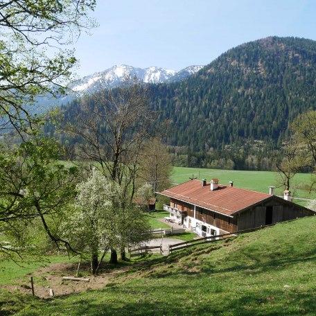 Natur soweit das Auge reicht!, © im-web.de/ Touristinformation Fischbachau