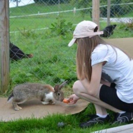 Die Hasen freuen sich auf Besuch!, © im-web.de/ Touristinformation Fischbachau