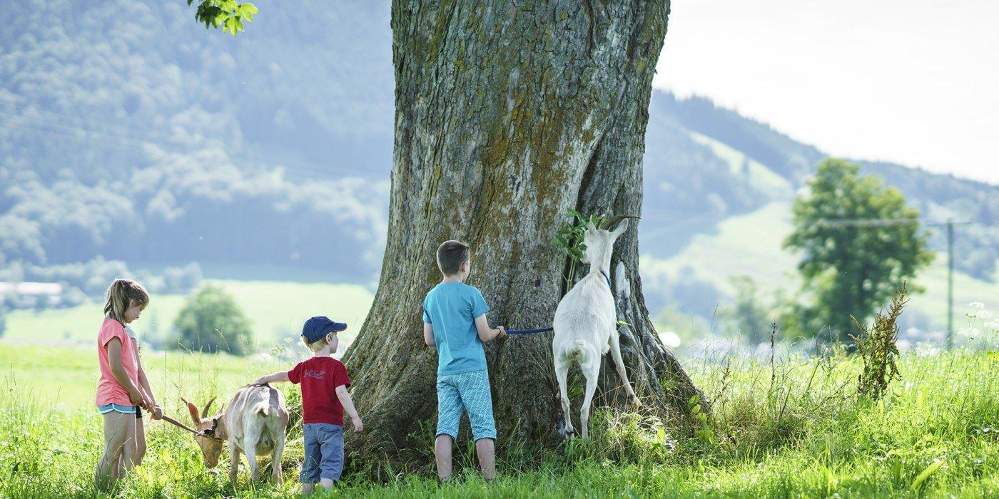Urlaub mit Kindern Fischbachau, © Dietmar Denger