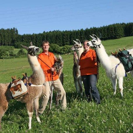 Lama, © im-web.de/ Touristinformation Fischbachau